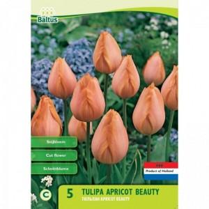 poza Bulbi de lalele Apricot Beauty, 5 buc/punga, culoare piersiciu