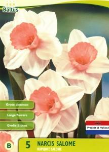 poza Bulbi de narcise Salome , 5 buc/punga, floare batuta,