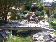 Galerie foto Lac artificial si cascada cu sisteme de filtrare si recirculare a apei