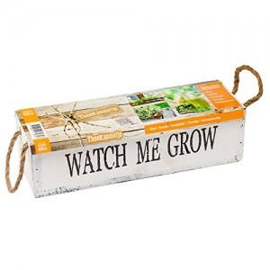 poza Pachet  plante aromatice (mix ierburi aromatice si  seminte de legume) Watch me grow Teekanntje