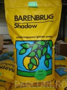 poza Seminte Gazon Barenbrug Green Grass Shadow, sac 15kg