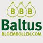BALTUS BLOEMBOLLEN