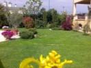 Amenajare gradina cu plante si flori de primavara, vara si toamna. in restul anului plantele care au inflorit deja, raman decorative prin forma sau prin culoarea frunzelor.
